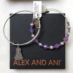 Alexa and Ani bracelet